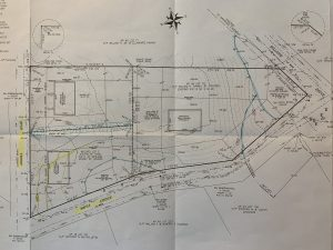 Angell Blueprint